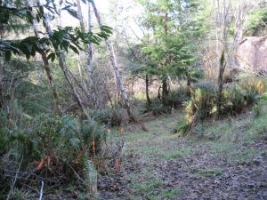 view garden west